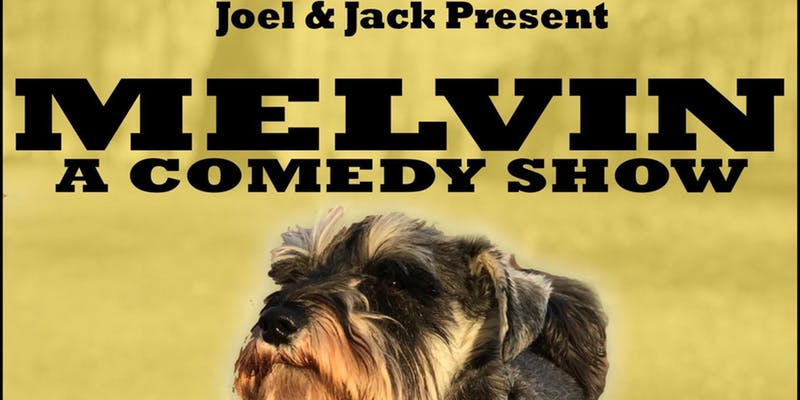 Melvin: A Dog Friendly Stand Up Show