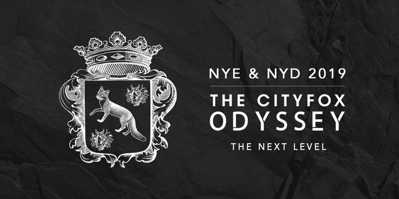 The Cityfox Odyssey: NYE and NYD