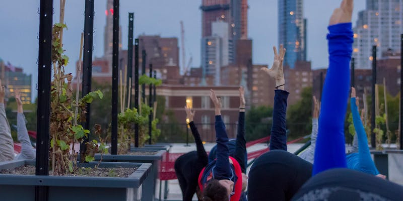 Sunset Yoga at Rooftop Reds