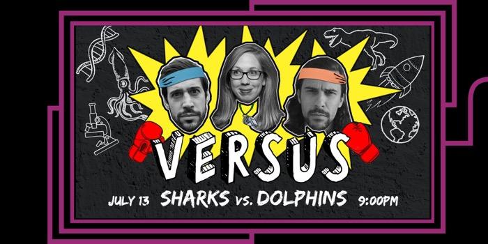 VERSUS: Sharks vs. Dolphins